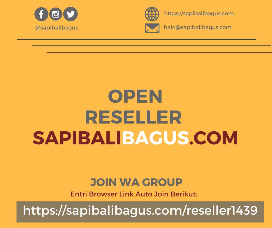Open Reseller Hewam Kurban Sapi Bali Bagus 2018